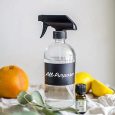 DIY Natural All-Purpose Cleaner