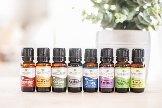 Plant Therapy Essential Oils lined up on a counter.