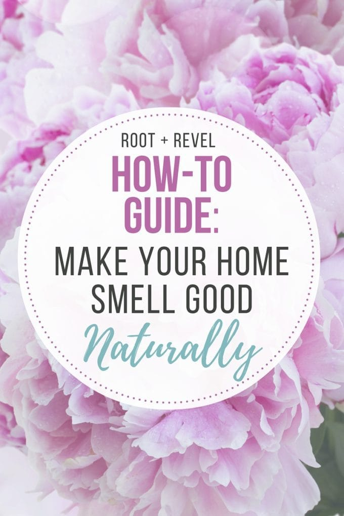 Natural air fresheners how to make your home smell good for What makes house smell good