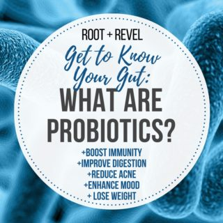 Get to Know Your Gut: What Are Probiotics?