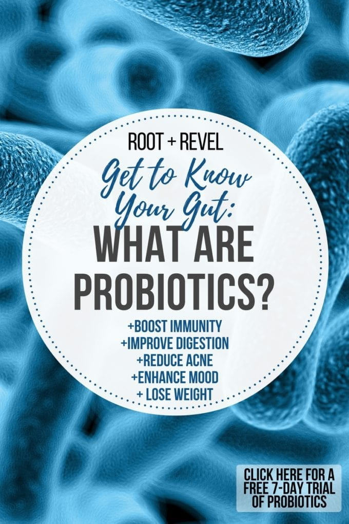 Probiotics help balance the good and bad bacteria in your gut, boosting immunity, improving digestion and aiding in weight loss. Find out what probiotics are best for you here, plus get a 7-day free sample of RenewLifeProbiotics. #ad