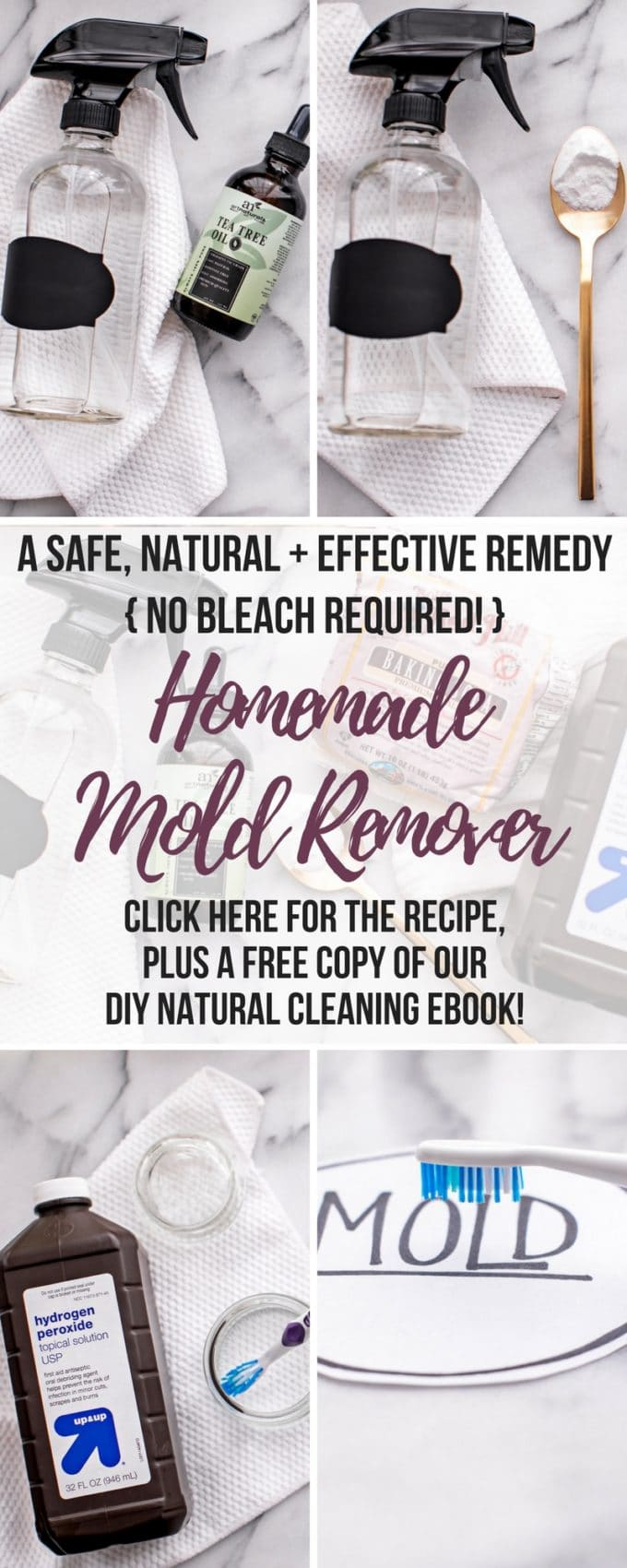 Homemade Mold Remover
