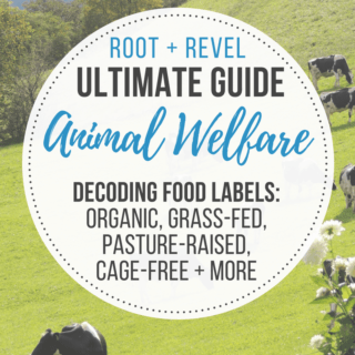 Animal Welfare Guide: Decoding Food Labels + Certifications