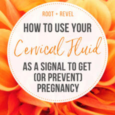 How to use your cervical fluid to get (or prevent) pregnancy